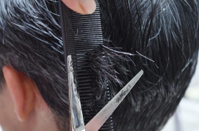 散髪 頻度 カット